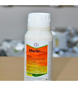 MERLIN DUO 500ml  erbicid porumb